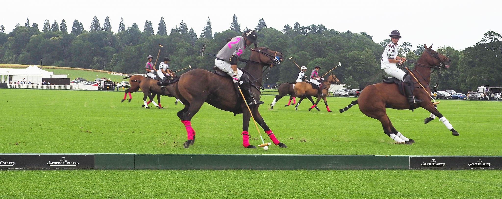 Cowdray Polo Club