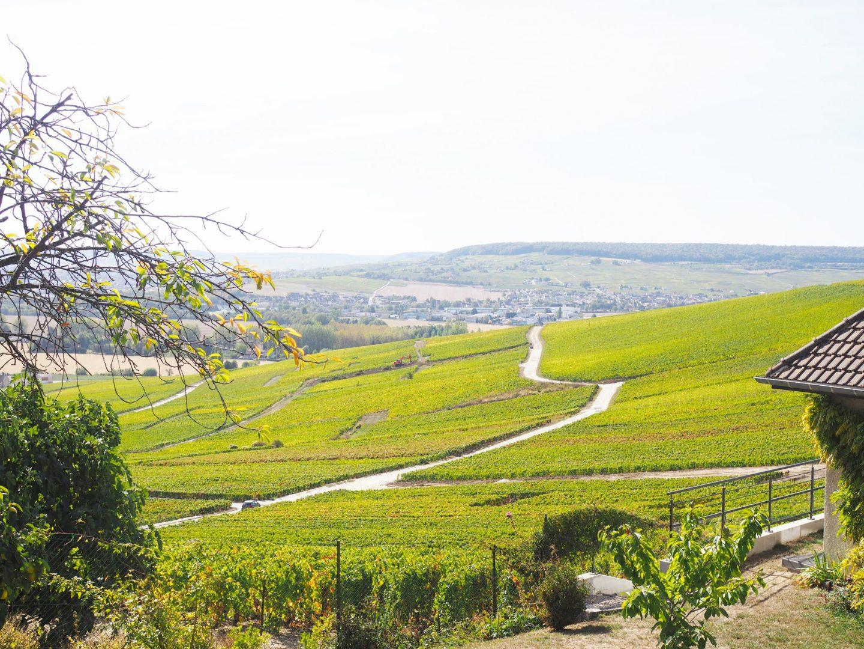 Champagne Tribaut Views