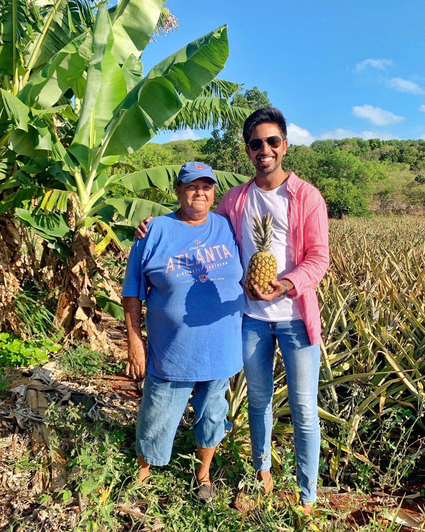 Lady Di's Pineapple Plantation, Eleuthera